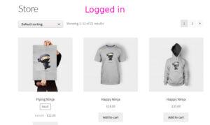 Screenshot - Registered customer viewing store